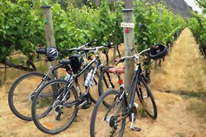 Arrowtown, cycle wine tour, New Zealand