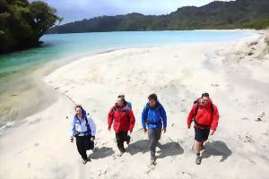 Explore Stewart Island, New Zealand with a guided walk
