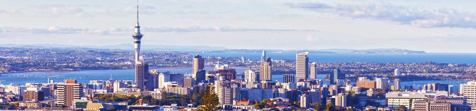Auckland from above
