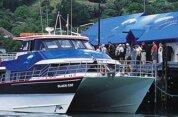 Akaroa Harbour Nature Cruise