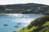 The Essence of Waiheke Wine Tour