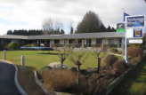 Accommodation: Anchorage Motel, Te Anau