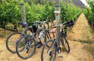 Ride and Wine