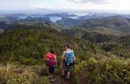 Great Barrier Island Private Tour