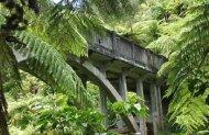Bridge to Nowhere Jet Boat Tour