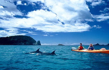 Cathedral Cove Scenic Cruise