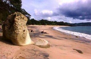 Cooks Beach & Flaxmill Bay