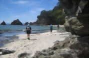 Coromandel Explorer 4 Day Guided Walk