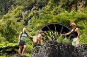 Rotorua to Whitianga