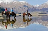 Dart River Adventures - 2 Hour River Wild Horse Trek