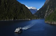 Milford Sound Discover More Nature Cruise