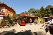 Driving Creek Railway & Potteries - EyeFull Tower Tour