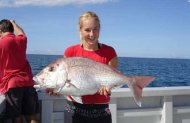 Earl Grey Fishing Snapper Half Day Trip - Shared Charter