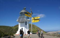 Bay of Islands and Cape Reinga Deluxe 4 day tour - day 2