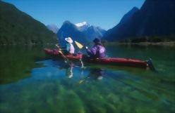 14 Day South Island Wilderness Encounters Tour - day 12