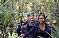 Kayak and Walk with Franz Josef Wilderness Tours