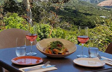 Auckland City Sights and Waiheke Wine Tour with GreatSights