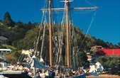 3 Day Bay Of Islands Tour including a Dolphin Cruise and Cape Reinga Trip from Auckland - day 3