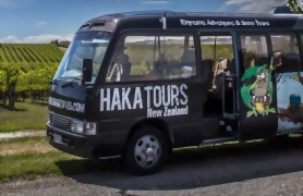 12 Day Southern Explorer Haka Plus Tour - Day 1