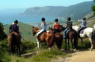 Nelson Guided Horse Trek