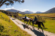 High Country Horses Glenorchy - Rees River Trail - Half-Day Trip