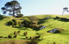 Waitomo, Rotorua and Hobbiton 4 day package - Day 3