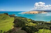 Auckland to Hokianga via Waipoua Forest
