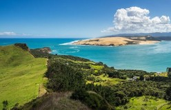 7 Day Boutique Northland Tour - day 5