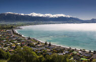 2 Hour Sigtseeing Tour with Kaikoura Shuttles
