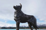 Christchurch to Lake Tekapo