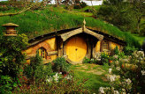 Auckland to Matamata and Hobbiton