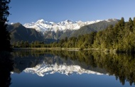 Fox Glacier and Lake Matheson Tour