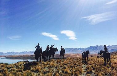 Mackenzie Alpine Horse Trekking
