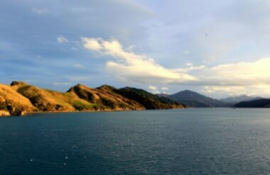 Marlborough and Sounds
