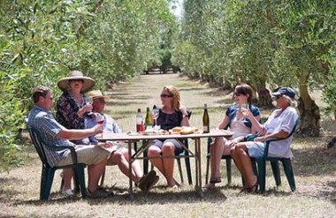 Martinborough Half Day Wine Tour