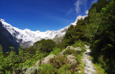The Contrasts of New Zealand 22 Day Hiking Tour
