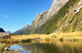 Southern Highlights and Milford Track Guided Walk - Day 6
