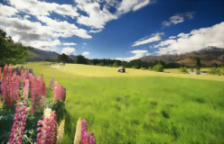Golfing Tour of New Zealand - day 14