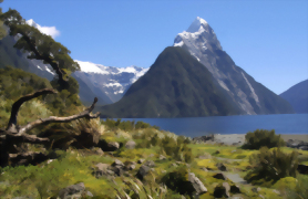 Milford Sound Spectacular 7 day Tour - Day 4
