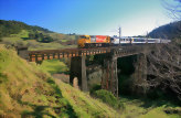 The Northern Explorer Scenic Train: National Park to Wellington