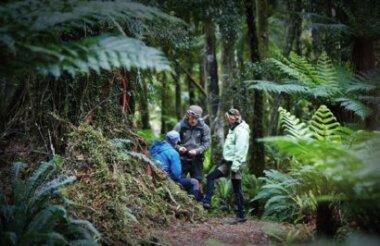 Guided Walks NZ - Routeburn Track Day Walk