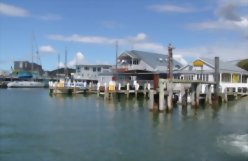 The Essential North Island 14 day tour - day 4