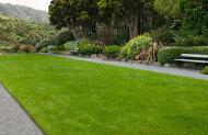 Otari Native Botanic Gardens - Wiltons Bush