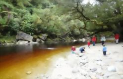 14 Day South Island Wilderness Encounters Tour - day 3