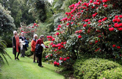 Grand Pacific 11 Day North Island Garden Tour - day 7