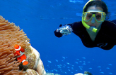 Outer Barrier Reef Cruise with Quicksilver Cruises