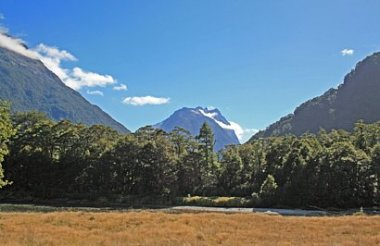 Milford Track Guided Day Walk