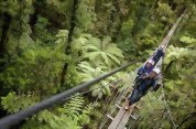 Rotorua Canopy Tours: The Original Canopy Tour