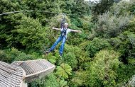 Rotorua Canopy Tours: The Ultimate Canopy Tour
