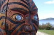 Waitomo to Rotorua
